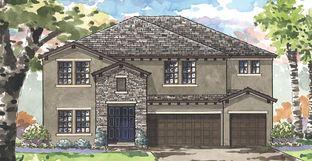 Westshore II - Triple Creek: Riverview, Florida - Homes by WestBay