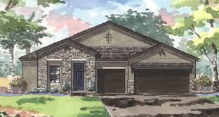 Swann III - Triple Creek: Riverview, Florida - Homes by WestBay