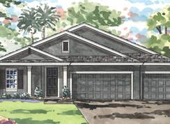 Swann III - Connerton: Land O' Lakes, Florida - Homes by WestBay