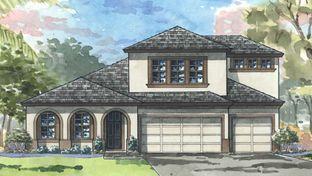 Hyde Park IV - Hawkstone: Lithia, Florida - Homes by WestBay