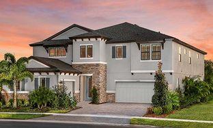 Belmar - Hawkstone: Lithia, Florida - Homes by WestBay
