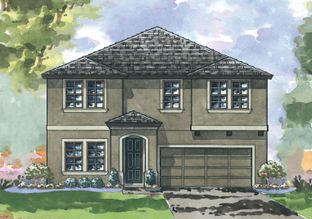 Egret - Hawkstone: Lithia, Florida - Homes by WestBay