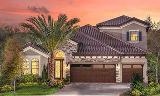 Biscayne II - Hawkstone: Lithia, Florida - Homes by WestBay