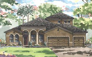 Biscayne Grand - Hawkstone: Lithia, Florida - Homes by WestBay