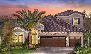 Biscayne II - Creek Ridge Preserve: Lithia, Florida - Homes by WestBay
