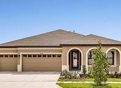 Hyde Park III - Triple Creek: Riverview, Florida - Homes by WestBay