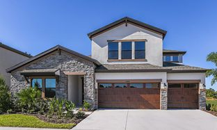 Hyde Park IV - Triple Creek: Riverview, Florida - Homes by WestBay
