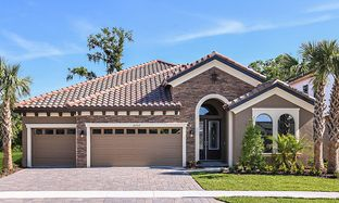 Biscayne - Creek Ridge Preserve: Lithia, Florida - Homes by WestBay