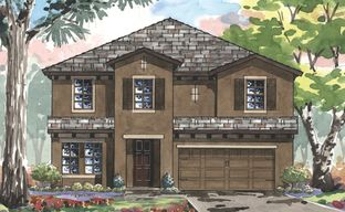 Hawkstone by Homes by WestBay in Tampa-St. Petersburg Florida