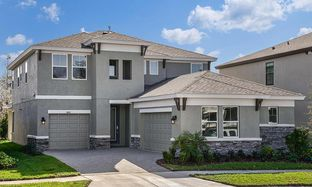 Ballast Point - Bexley: Land O' Lakes, Florida - Homes by WestBay