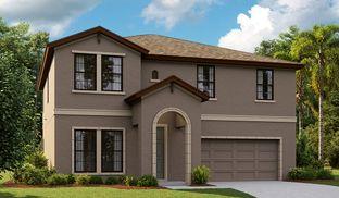 Kingfisher - Hawkstone: Lithia, Florida - Homes by WestBay