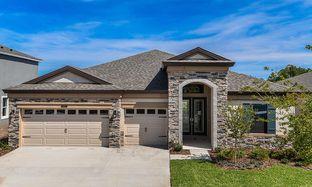 Bayshore I - Hawkstone: Lithia, Florida - Homes by WestBay