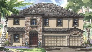 Virginia Park - Triple Creek: Riverview, Florida - Homes by WestBay