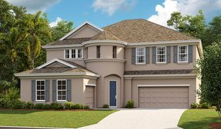 Madeira III - Waterset: Apollo Beach, Florida - Homes by WestBay