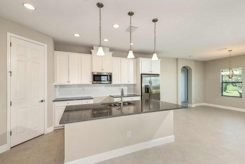 Kitchen-in-AVOCET II-at-Triple Creek Innovation-in-Riverview