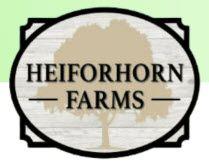 Heiforhorn Farms by Hughston Homes in Columbus Georgia