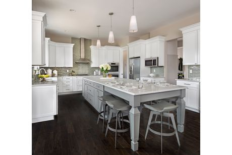 Kitchen-in-Somerset-at-Dunhill Park-in-Northville