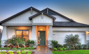 Asturia by ICI Homes in Tampa-St. Petersburg Florida