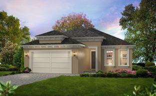 Avery II - Woodhaven: Port Orange, Florida - ICI Homes