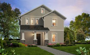 Persimmon Park by ICI Homes in Tampa-St. Petersburg Florida