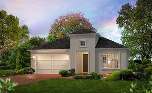 Charlotte - Lake Jovita: Dade City, Florida - ICI Homes