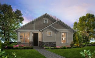 Lily - Persimmon Park: Wesley Chapel, Florida - ICI Homes