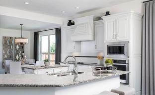 Magnolia Hills by Impression Homes in Fort Worth Texas