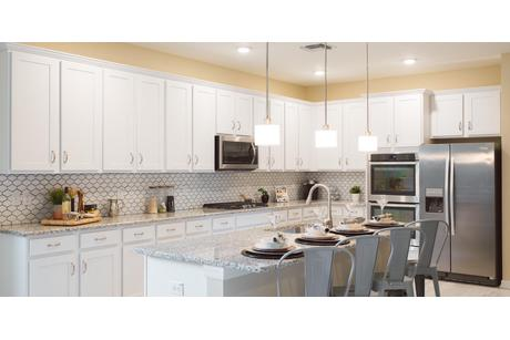 Kitchen-in-Magnolia-at-Connerton-in-Land O' Lakes