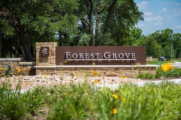 Forest Grove - Legend Estates Collection,78665