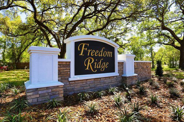 Freedom Ridge,33584