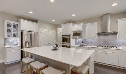 Kitchen-in-Pratt-at-Hilltop at Cedar Grove-in-Cedar Grove