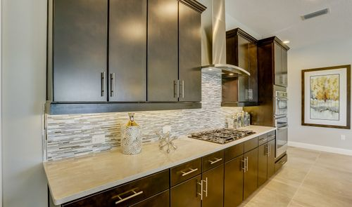 Kitchen-in-Tompkins II-at-The Highlands at Summerlake Groves-in-Winter Garden