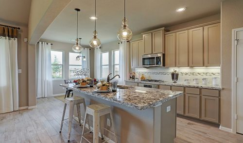 Kitchen-in-Blakemore II-at-Creek Bend-in-Richwood