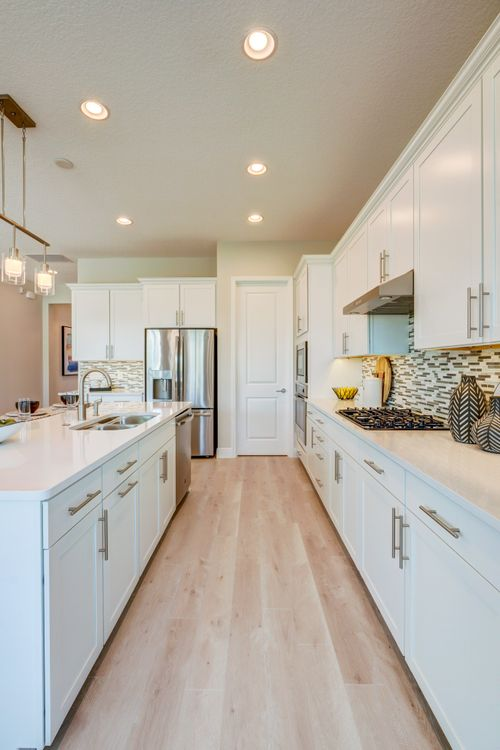 Kitchen-in-Sanya-at-Ocoee Landings-in-Ocoee