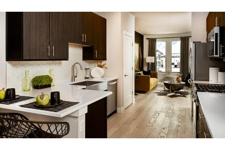 Kitchen-in-A Unit-at-City Homes at Lincoln Park-in-Denver