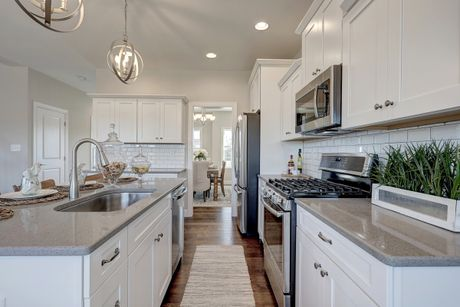 Kitchen-in-Windsor Manor-at-Castle Farms-in-Hampstead