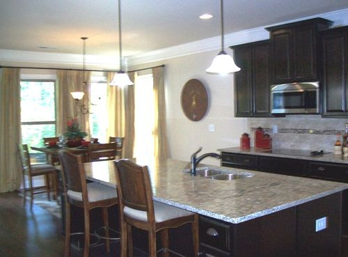 Kitchen-in-The Coventry-at-Luella Grove-in-Locust Grove