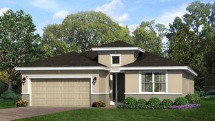 Lily - Cresswind at Victoria Gardens: Deland, Florida - Kolter Homes