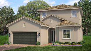 Siena with Bonus - PGA Village Verano: Port Saint Lucie, Florida - Kolter Homes