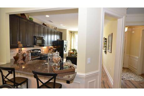 Kitchen-in-Cypress-at-Cresswind at Lake Lanier-in-Gainesville