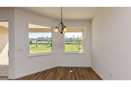 Empty-in-Aster-at-Victoria Hills-in-Deland