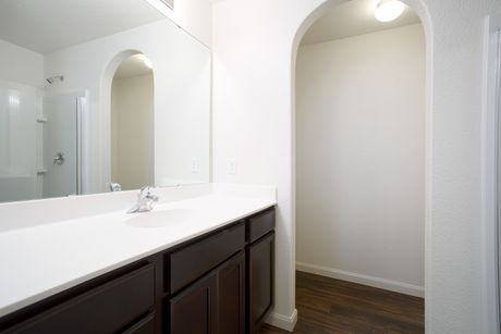 Bathroom-in-The Diamond-at-Sanford Select Acres-in-Big Lake