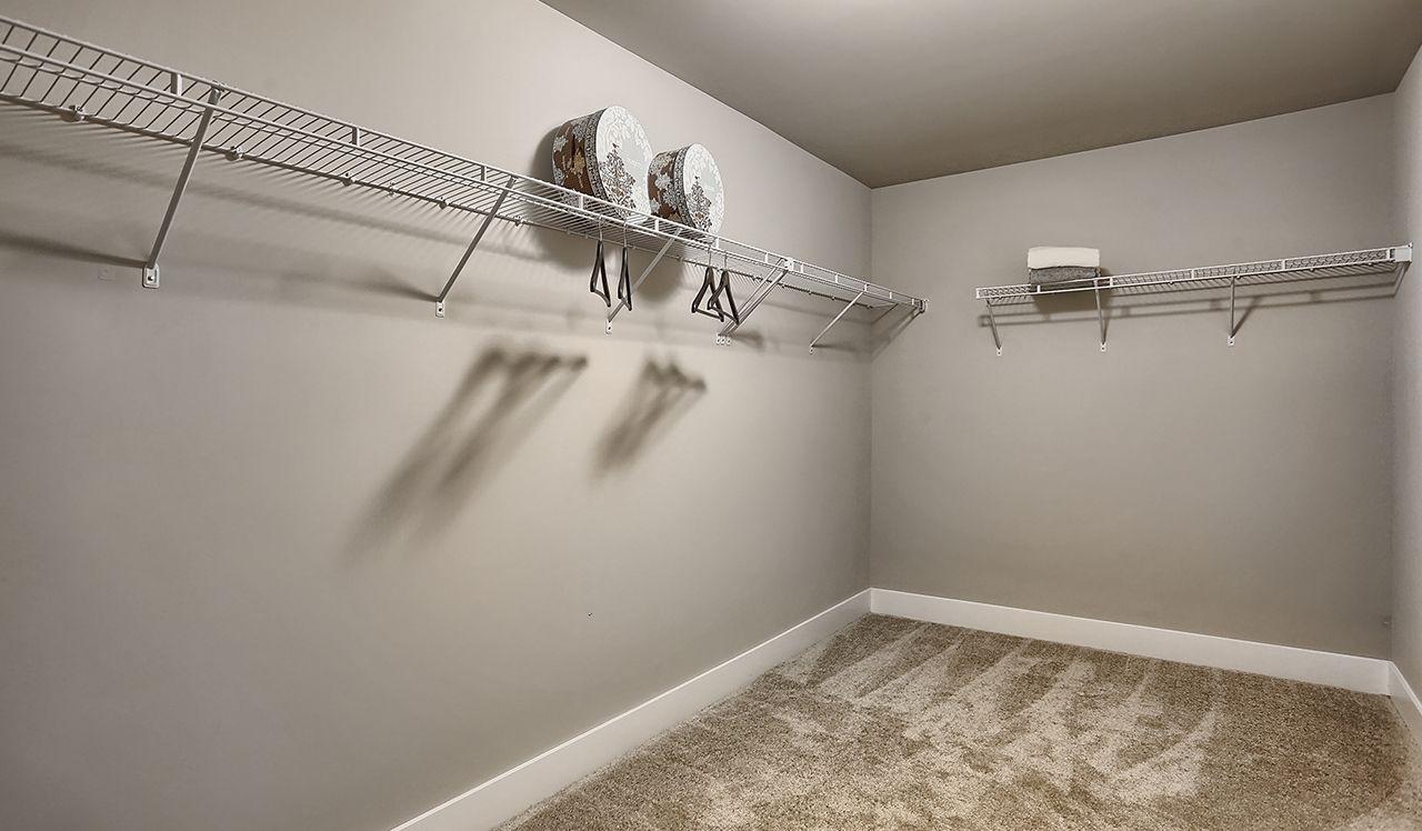 The Darien Closet
