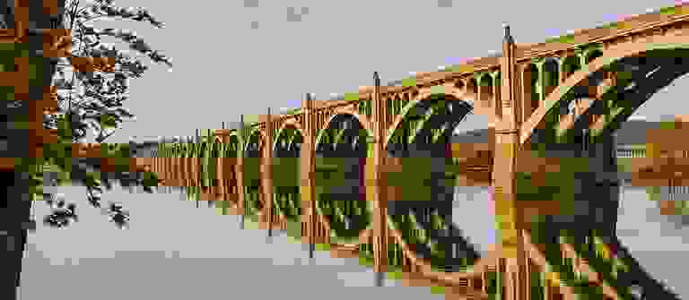 39533302-191126.jpg