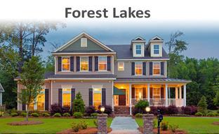 Forest Lakes by Landmark 24 Homes in Savannah Georgia