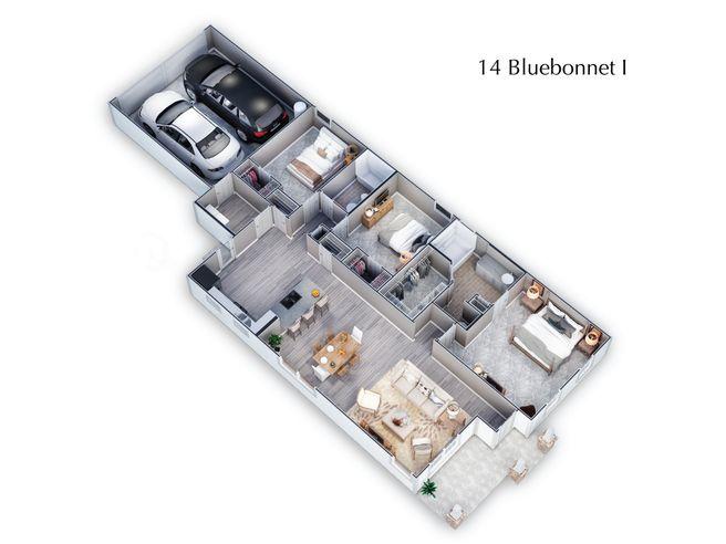 Bluebonnet Collection