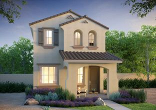 Sterling - Marketside II at Verrado: Buckeye, Arizona - Landsea Homes