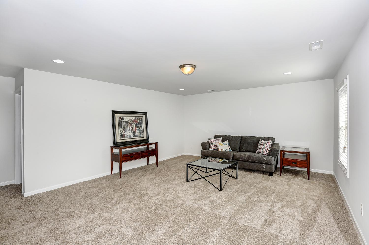 Recreation-Room-in-The Williamsburg-at-Burwell Gardens Freedom Series-in-Harvest