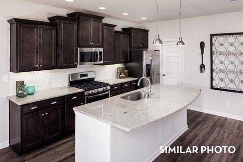 Kitchen-in-221 Iron Circle-at-Colonial Pointe-in-Meridianville