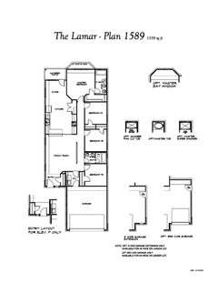 Camellia - Lamar